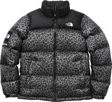 Grey Leopard Nupste