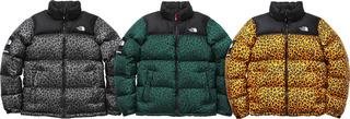 Nupste leopard Jackets 2011