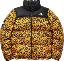 Yellow leopard Nupste