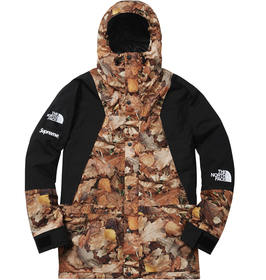 Leaves Mountain Light Jacket