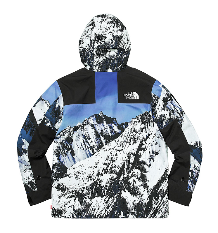 Supreme North Face Jacket Fall:Winter 2017 Release - Mountain Parka back